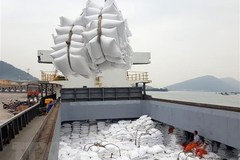Vietnam likely to export 6.7 million tonnes of rice this year