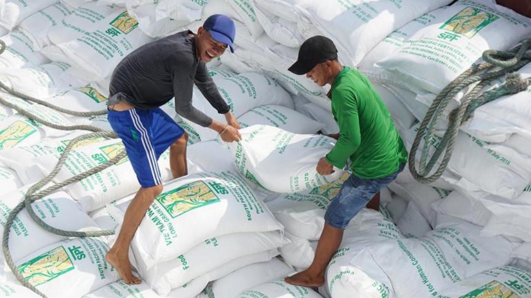 Thủ tướng yêu cầu Thanh tra Chính phủ làm rõ xuất khẩu gạo