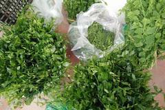 Kỳ lạ loại rau có giá đắt hơn thịt ở Việt Nam