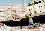 Mở tờ khai lúc 0h chủ nhật, có lợi ích nhóm trong xuất khẩu gạo không?