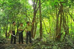 VN's special-use forests have ecotourism potential: experts