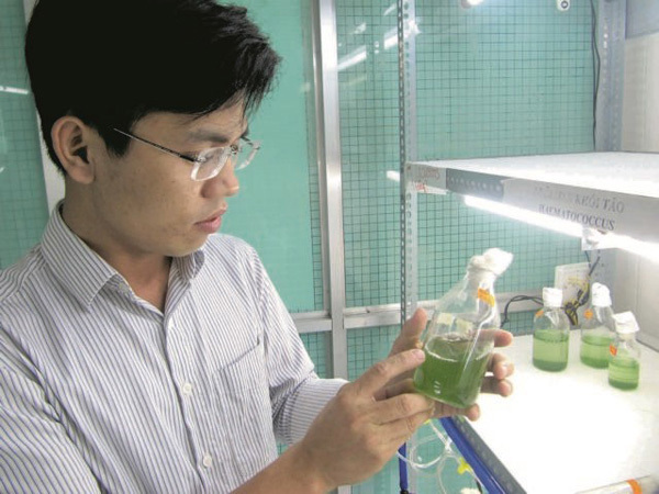 Algae research promotes nature-based growth