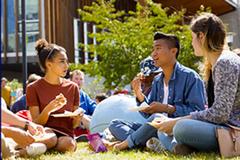 Hội thảo online Du học New Zealand: chọn ngành hot 2020