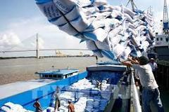 Thanh tra Chính phủ làm rõ có hay không 'dấu hiệu trục lợi' xuất khẩu gạo