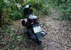 Rủ nhau vào rừng hái măng, 2 chị em ở Quảng Trị mất tích