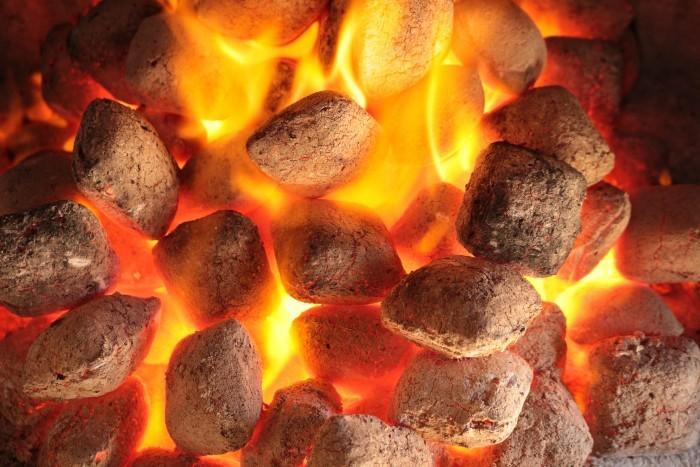 Tưởng thứ vứt đi, nào ngờ đốt hoá than bán lấy tiền triệu