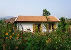 9x từng đi bar tới sáng, từ Sài Gòn về Khánh Hòa xây nhà, làm vườn