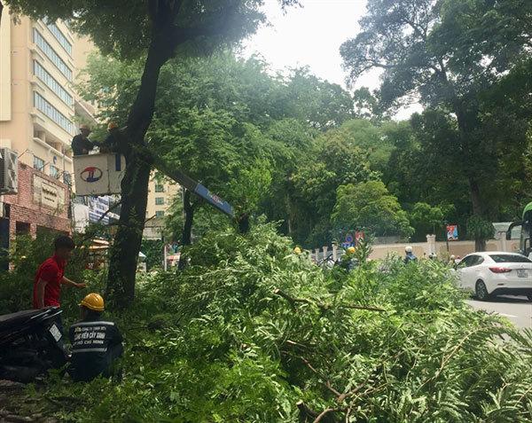 HCM City prepares for disaster responseahead of rainy season