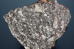 Nhặt được khối đá xù xì dị thường đòi bán lấy hơn 58 tỷ