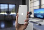 Cách mở các tùy chọn thông báo trên iPhone SE 2020