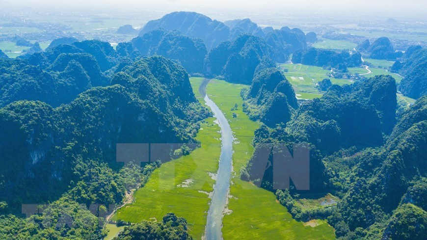 Tam Coc in harvest season dazzles visitors