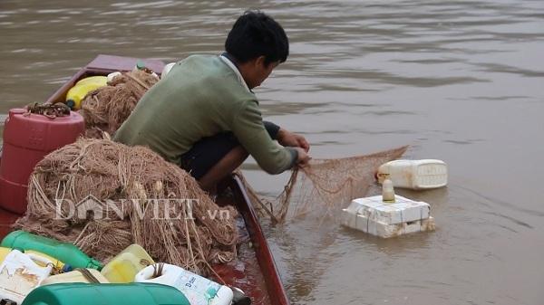Ngư phủ sông Đà săn cá măng khủng ví như 'thủy quái'