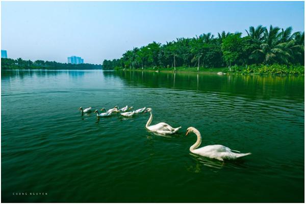 Hồ nước rộng gần gấp 5 lần Hồ Gươm tại dự án Sky Oasis