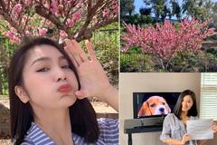 Cuộc sống hạnh phúc của Diệu Hương 'Hoa hồng trên ngực trái'