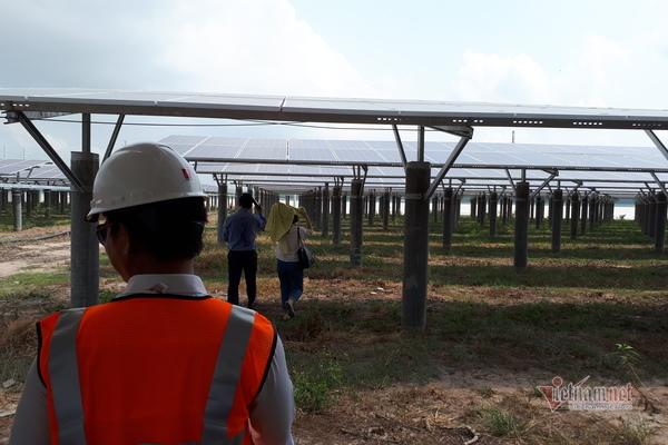 Chuyển nhượng vốn dự án điện mặt trời: Chuyện bình thường