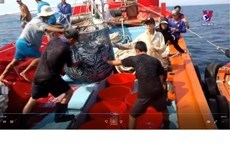 Quang Ngai fishermen protecting national sovereignty