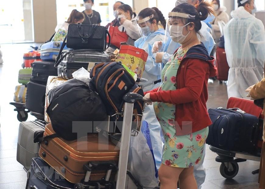 returning home,overseas vietnamese,russia,covid-19,coronavirus