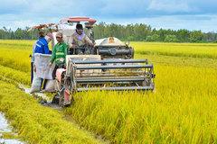 Đề xuất miễn 75.000 tỷ đồng tiền thuế cho hàng triệu nông dân