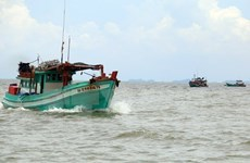 Fishermen stay within Vietnam's territorial waters