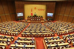 14th National Assembly contributes to national development