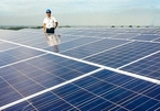 Renewable energy market picks up as many projects put on sale