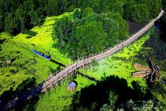 'Cầu tre vạn bước' xuyên rừng tràm Trà Sư