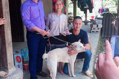 A happy ending for a dog and its ethnic minority owner