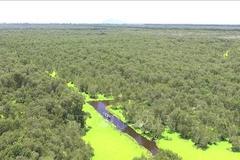 In Vietnam, stopping biodiversity degradation a challenging task