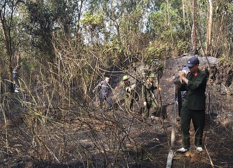 Cháy rừng tràm hơn 3 tiếng sát sân bay Đà Nẵng, 5.000 m2 bị thiêu rụi