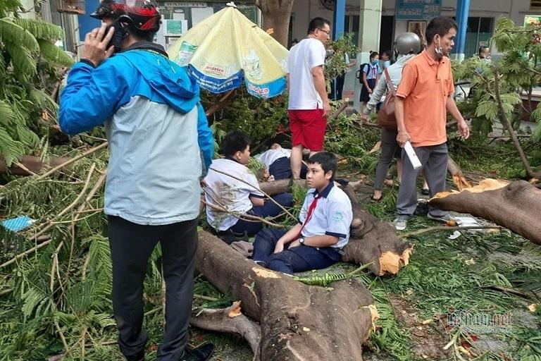Vụ cây phượng đổ, đè 18 học sinh: Còn 2 học sinh đang nằm viện