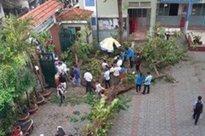 """Nhân chứng vụ cây đổ khiến nhiều học sinh thương vong: """"Nghe tiếng cây đổ 'rầm' rất to, sau đó có nhiều cháu học sinh kêu la thảm thiết"""""""