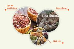 Thực dưỡng miễn dịch - Giải pháp tăng cường sức khỏe cho cả gia đình