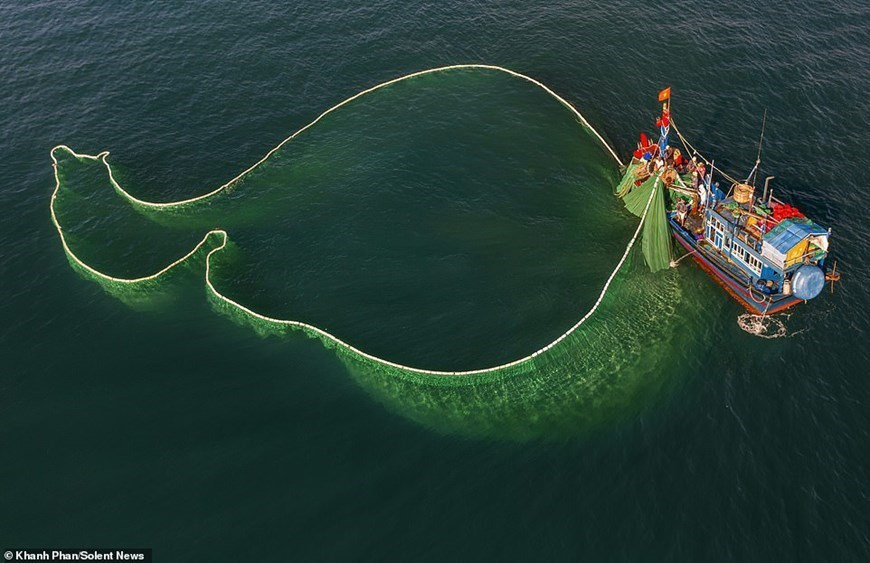 Fishermen create mesmerising patterns at sea