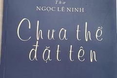 'Tôi thích sự táo bạo trong lao động con chữ của Ngọc Lê Ninh'
