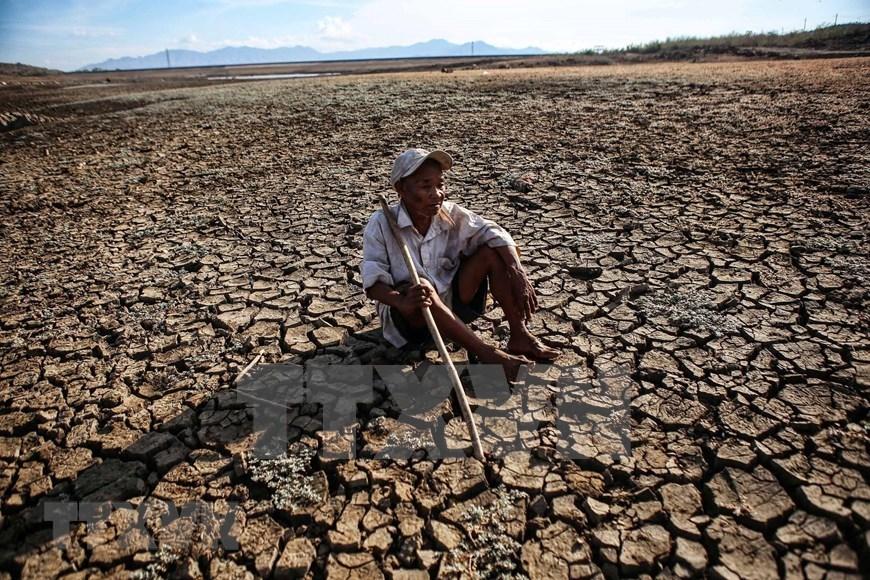 drought,central vietnam,ninh thuan
