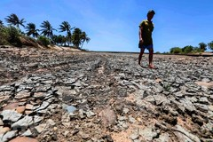 Ninh Thuan faces severe drought