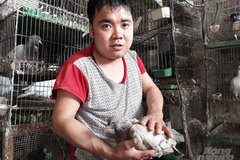 Disabled man earns good income from raising pigeons
