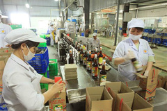 Domestic market could be engine for Vietnamese enterprises' growth