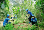Uniform payment of forest environmental services needed: experts