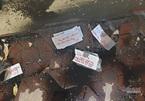 Nhà báo bị kẻ lạ mặt đổ chất bẩn vào nhà, Công an Hải Phòng vào cuộc