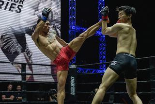 Mixed martial arts has bright future in Vietnam