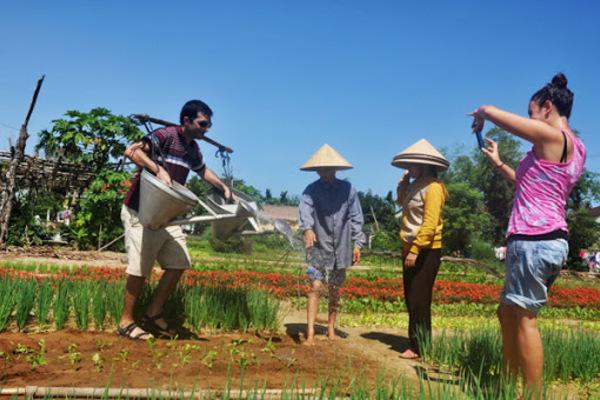 Phát triển nông nghiệp gắn với du lịch cộng đồng