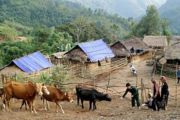 Rẻo cao biên giới tăng tốc thoát nghèo