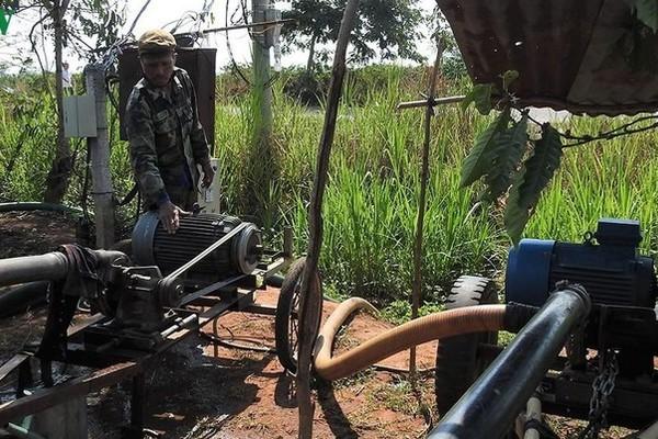 Kon Tum: Điện ra đồng giúp nhà nông nâng cao năng suất