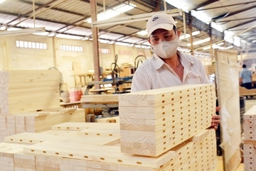 Chinese found counterfeiting Vietnamese origin for woodwork exports