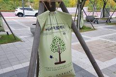 Xem cách Hàn Quốc bảo vệ và chăm sóc cây xanh