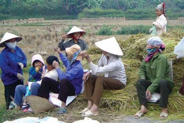 Nghệ An: Nâng cao chất lượng đào tạo nghề nông nghiệp để giảm nghèo bền vững