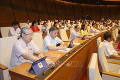Quốc hội chính thức phê chuẩn Hiệp định thương mại tự do Việt Nam - EU