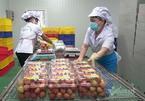 Digital transformation, online export of Vietnamese goods steps up