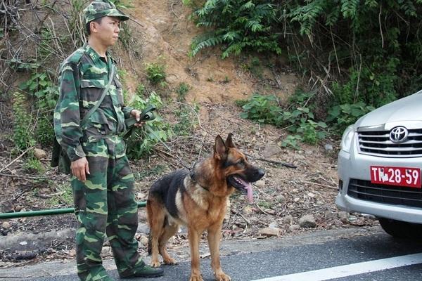 Cục Điều tra Bộ Quốc phòng vào cuộc truy bắt Triệu Quân Sự